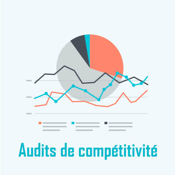 Audits de compétitivité