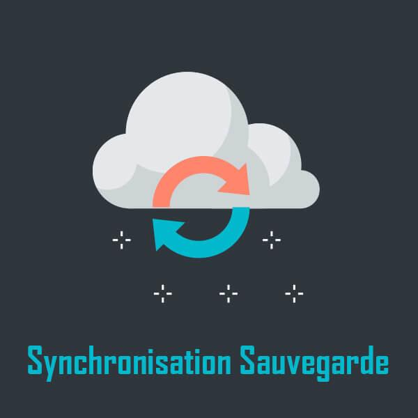 Sauvegarde – Synchonisation de données